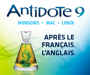 Banniere_A9Anglais_300X250